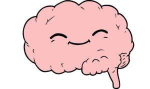 Kayoko Takeda Brain Conexão Cérebro Intestino